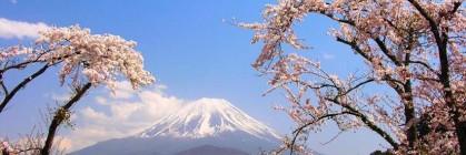 Dịch Vụ Xin Visa Cho Người Nhật Bản Tại Sân Bay Quốc Tế Nội Bài
