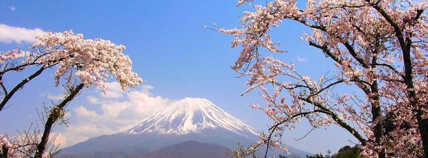 Dịch Vụ Tư Vấn Làm Visa Nhật Bản Uy Tín