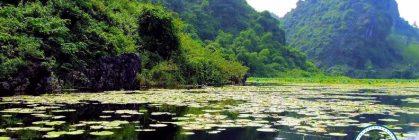 Xin Visa đi Myanmar Giá Rẻ Cho Người Nước Ngoài