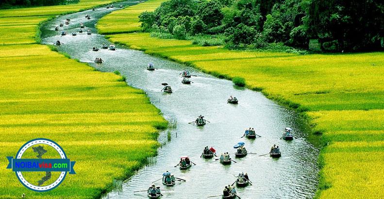 Dịch Vụ Tư Vấn Làm Visa Thái Lan Giá Rẻ