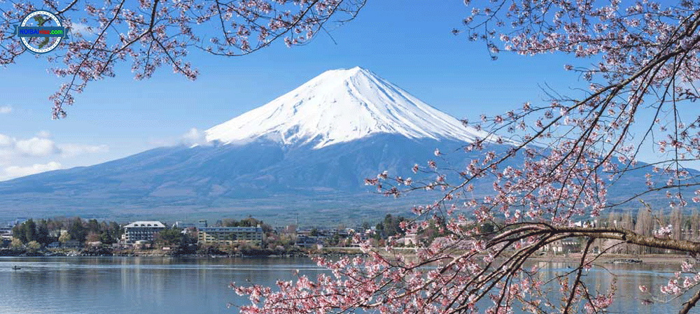 Dịch Vụ Làm Giấy Phép Lao động Cho Người Nhật Bản